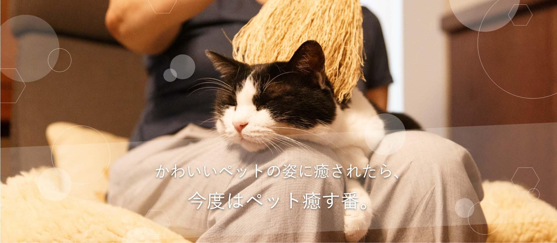 愛犬、愛猫、愛するペットを癒す箒。高倉工芸の癒し箒(ペットブラシ)のご紹介。